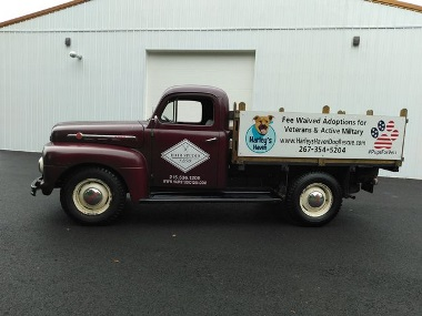 1952 Ford F3 - Harley's Dog Rescue