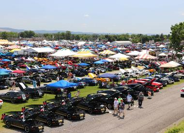 2021 Carlisle Ford Nationals - Credit Andrew Welsh (8)